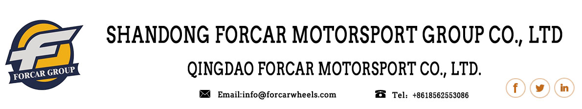 Shandong Forcar Motorsport Group  Co.,Ltd--